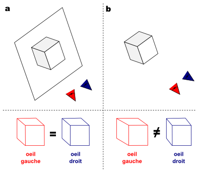 Comparaison entre la vision d'un dessin en 3D et d'un objet en 3D